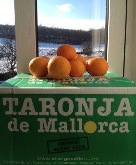 IMG_3481-Orangen