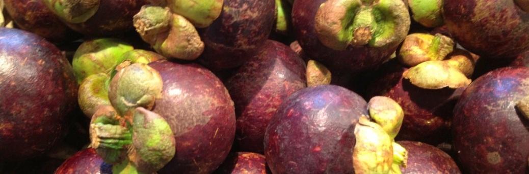 thai-aubergine