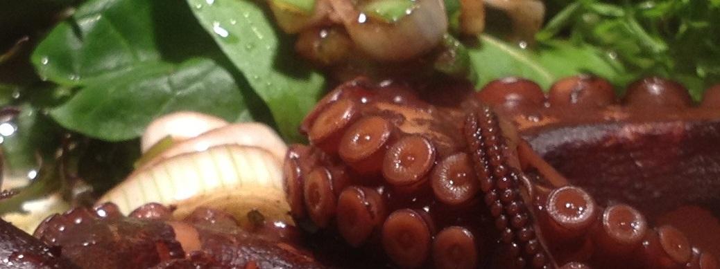 oktopus-madagaskar-rezept-echtesessen-header