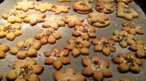 Weihnachtsplaetzchen-Muerbeteig-mit-weisser-Schokolade-Gewuerzblueten