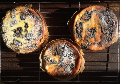 Kaesekuchen-mit-Mohn-IMG_2676