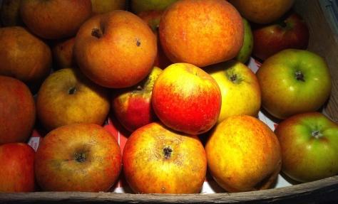 Aepfel-fuer-Adventkuchen-aus-Muerbeteig-mit-Apfel-Marzipan-und-Mandeln-IMG_0868